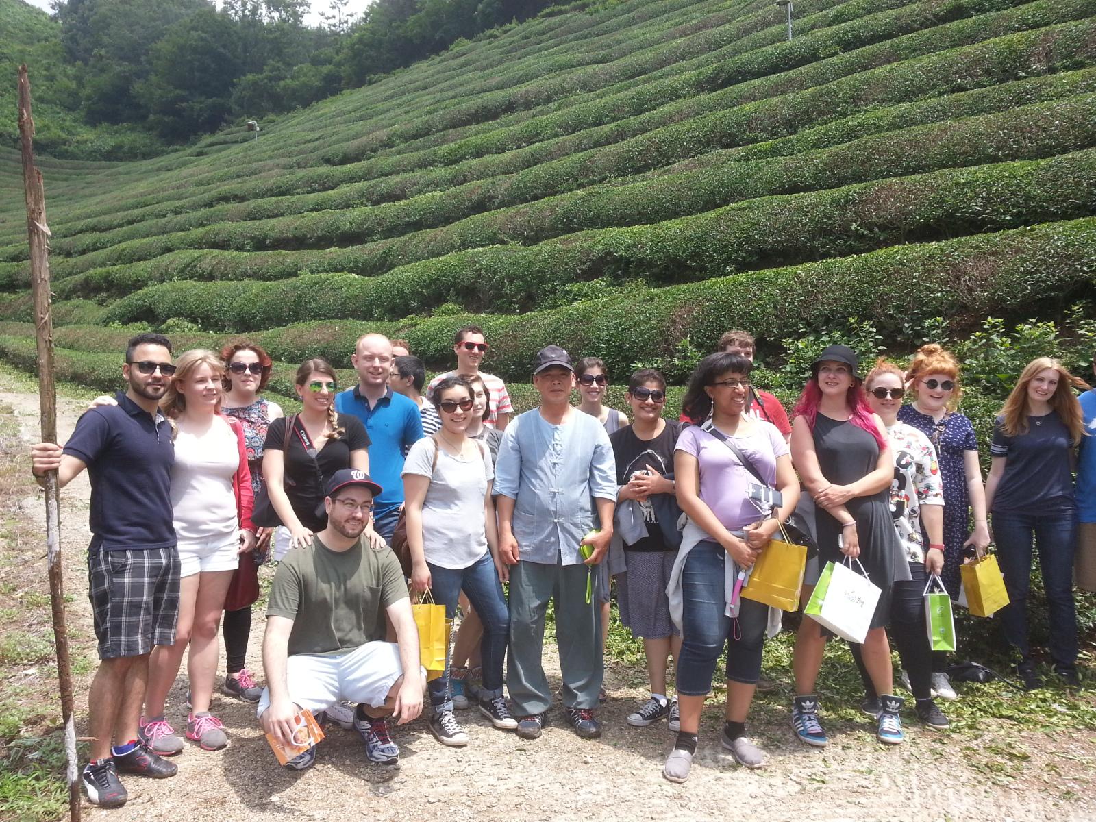 Green tea leaves picking & green tea making trip