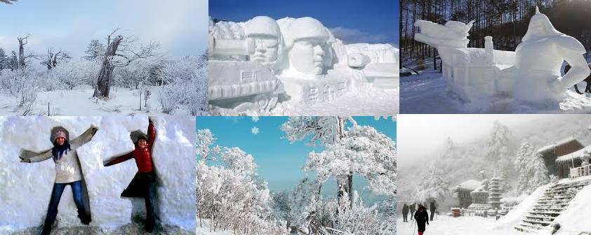 taebaek-snow-fest-main