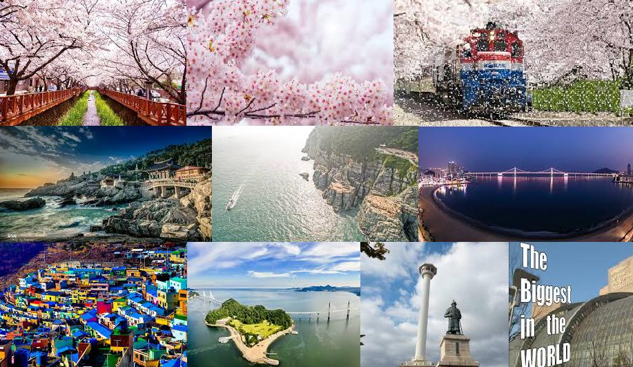 Busan Jinhae April 6-8